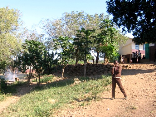 Mpotshini's fruit trees