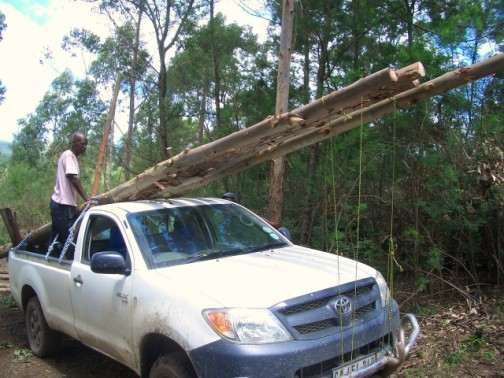 Some BIG poles on a not-so-big car