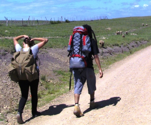 Guests walk to homestay